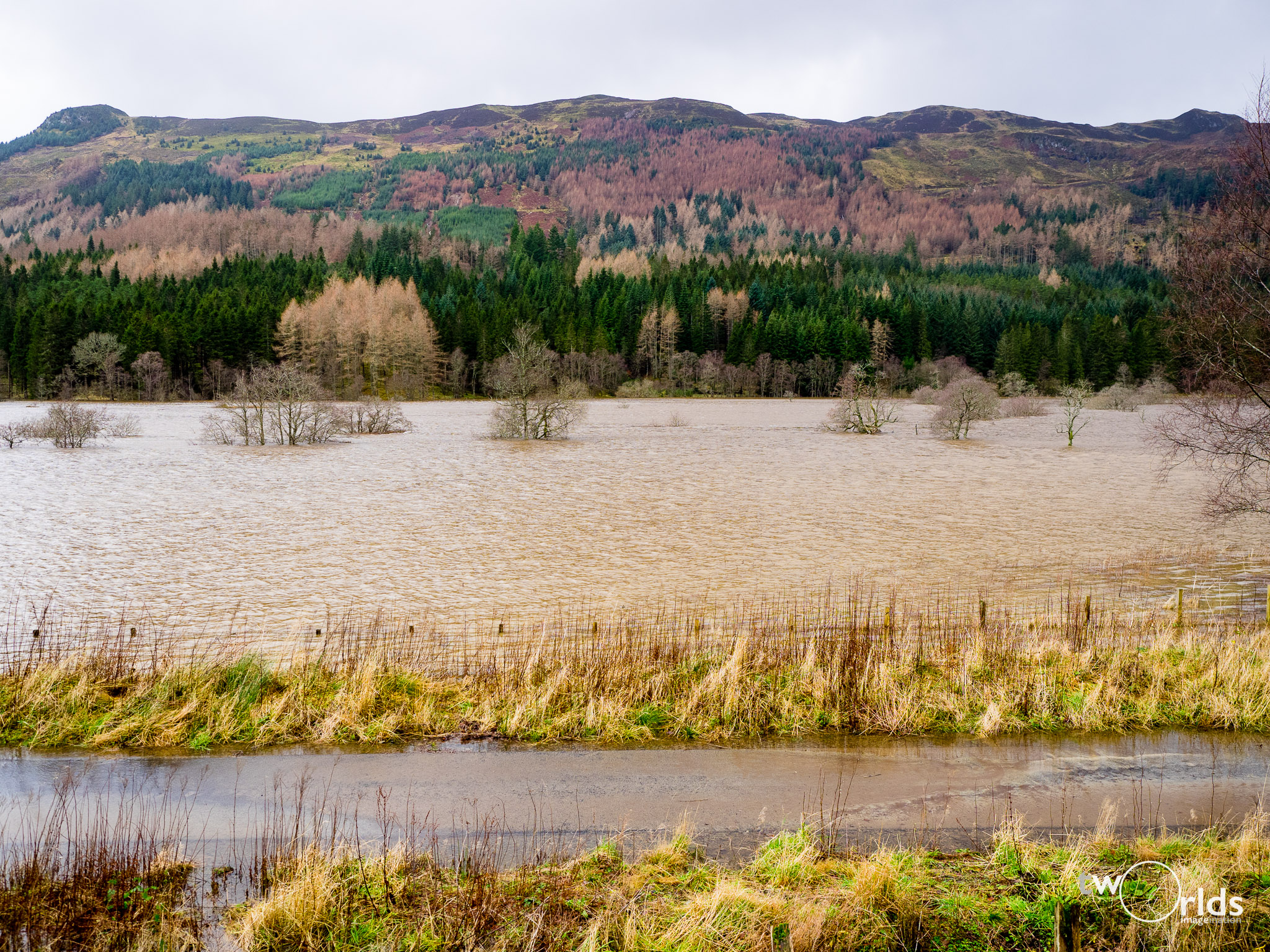 Loch Occasional from A84